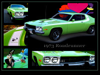 1973 Roadrunner Collage_B 18x24